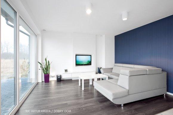 Realizacja w minimalistycznym stylu wnętrz projektu Berlin (DCP160)